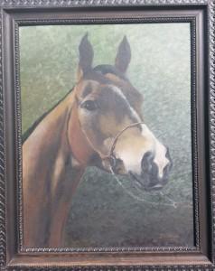Koń-portret 2