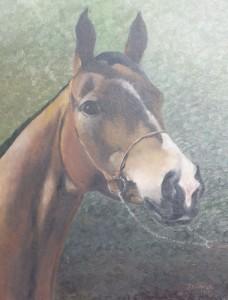 Koń-portret