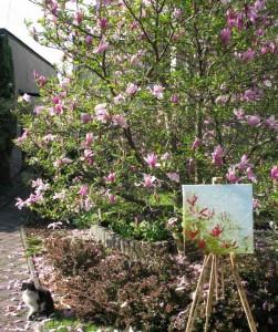 Wiosna z magnolią w plenerze