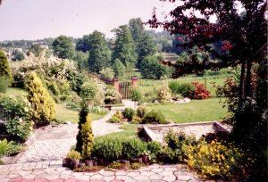 Widok na kamienną ścieżkę 10 lat temu