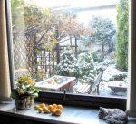 jesiennie-i-zimowo