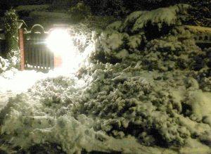 Zima, wrzosowisko nocą